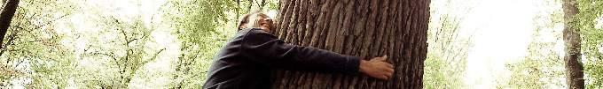 Cédric Bolmont auprès de l'arbre