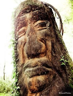 L'esprit d'Abane, constructeur de cabanes dans les arbres