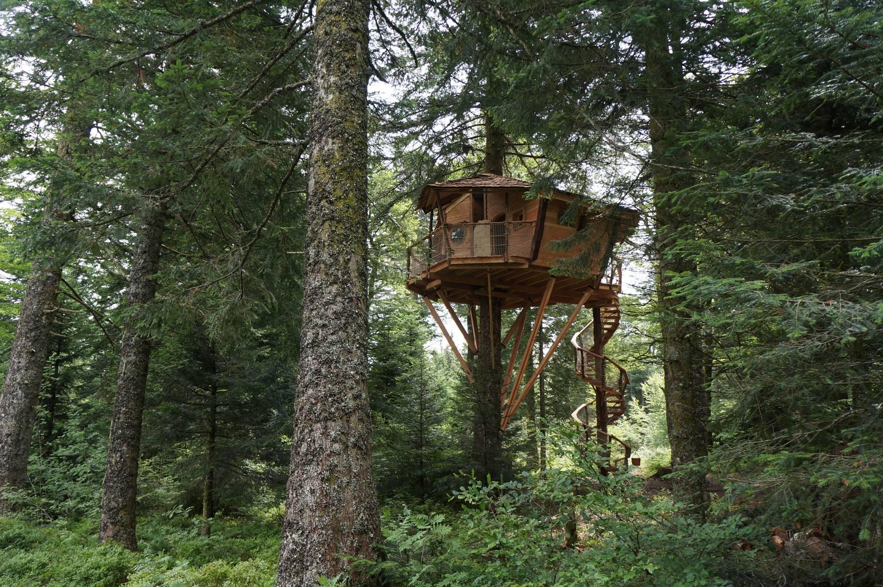 abane constructions abane cabanes dans les arbres abane. Black Bedroom Furniture Sets. Home Design Ideas