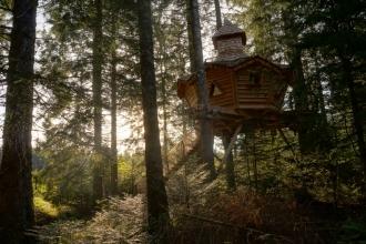 3 cabanes dans les arbres aux Cabanes des Volcans en Auvergne