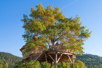 Les Cabanes du Chêne Rouvre à Saint Dié des Vosges